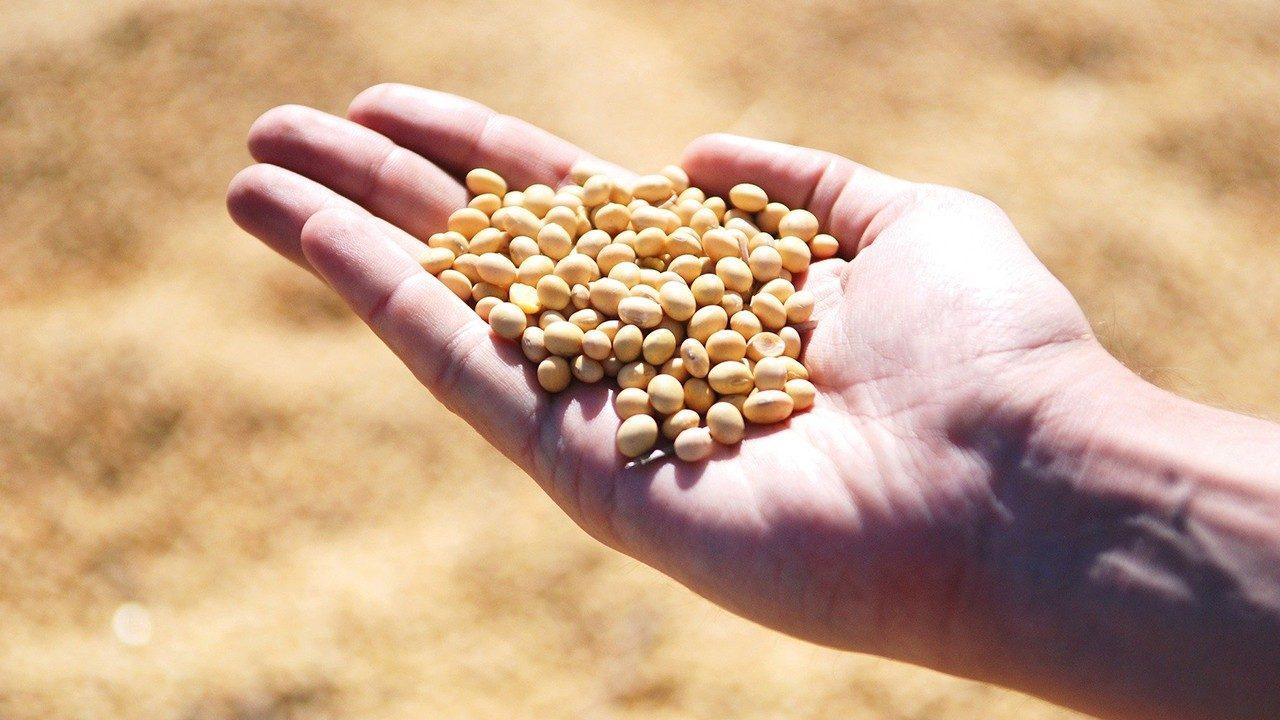 130 millions de personnes supplémentaires menacées par la faim dans le monde