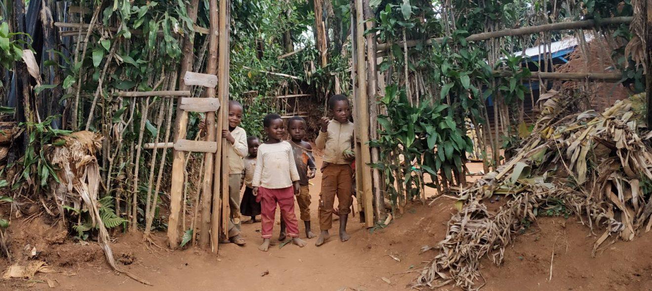 Pauvreté et sécurité alimentaire en RD Congo