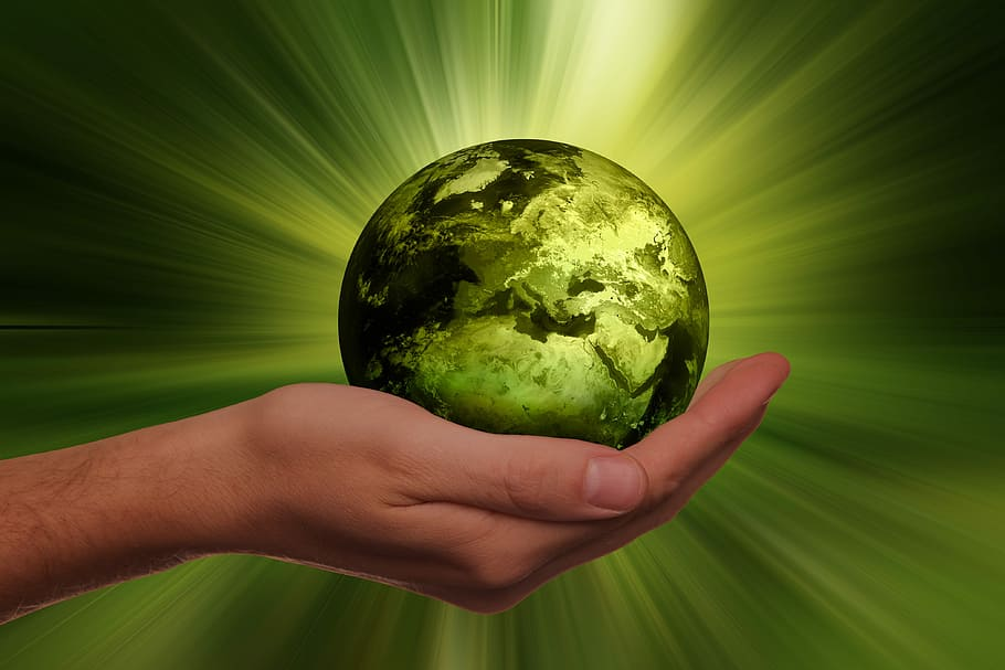 L'écologie intégrale appliquée dans l'Eglise